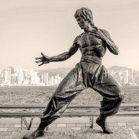 фотограф в Камбодже  - Брюс Ли - человек легенда! :: Константин Василец