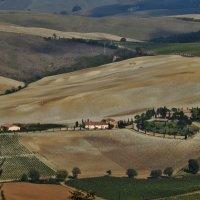 Тосканские холмы :: Лина Пушок