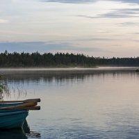 Утро на озере :: Ольга Саранцева