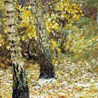 Снег в октябре. :: Елена