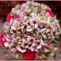 Головокружение от запаха цветов :: Лидия (naum.lidiya)