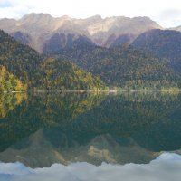 Озеро Рица :: Людмила Добрецкая