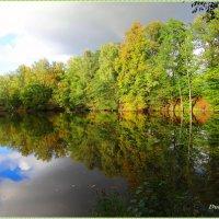 Зеркальное отражение осени.. :: Антонина Гугаева