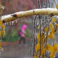 Шел ледяной дождь... :: Ната Волга