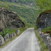 Дорога к старинному мосту :: Светлана Игнатьева