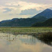 Горное озеро :: ирина )))