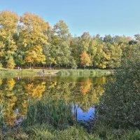 Снова осень закружила карусель мелодий :: Alexandr Zykov