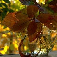 Осенняя карамель :: ФотоЛюбка *