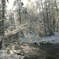 У горной речки в октябре :: galina tihonova