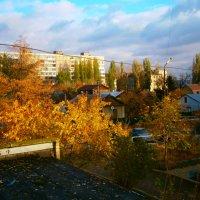 Осень сегодня :: Лариса Коломиец