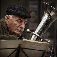 О чём задумался, трубач?.. :: Александр Поляков