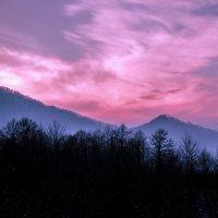 Зимний закат :: Ви Ви