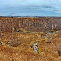Осень у реки. :: Наталья Юрова