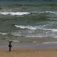 В ожидании погоды у моря :: Клара Кузнецова