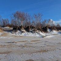Северодвинск. Берег Белого моря :: Владимир Шибинский
