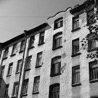 Дом на петроградке :: Михаил Лобов (drakonmick)