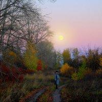 Вечерняя прогулка :: Эркин Ташматов