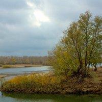 Осень :: Viktor Eremenko