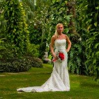 Невеста :: Наталья Краснюк