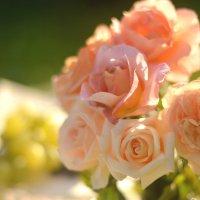 розы :: Nina sofronova