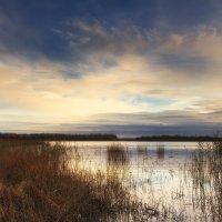 Konsu järv. (Estonia) :: Дима Хессе