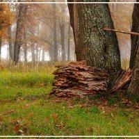 Осенний пейзаж :: Юрий Глушков