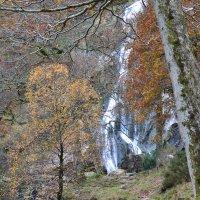 Водопад. :: zoja