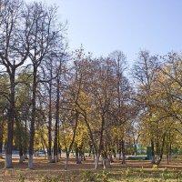 В парке :: val-isaew2010 Валерий Исаев