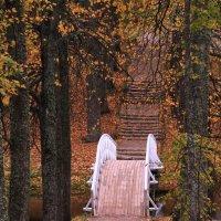 Осень в Михайловском :: Сергей Галкин