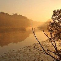 ...мелодия осеннего утра.. :: Александр Герасенков