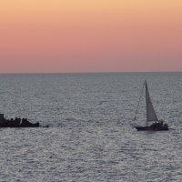 Море. :: Дмитрий Иншин