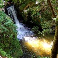 Маленький водопад. :: Виктор Коршунов