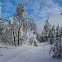пейзаж :: Сергей