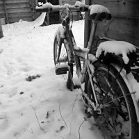 зима пришла 2 :: Сергей Розанов