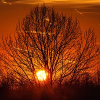 Закат в последнии морозные дни октября. 04. :: Анатолий Клепешнёв