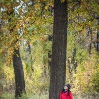 Под деревом :: Виктория