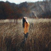 вознесение души :: Дмитрий Седых