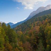 Баварские Альпы :: Михаил Бояркин