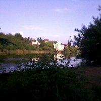 Летний пейзаж :: Миша Любчик