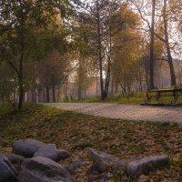 В парке осень. :: Руслан Горячев
