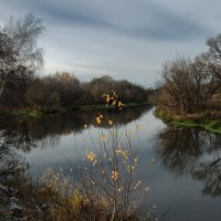 Осенние зарисовки :: sergej-smv