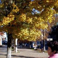 Осенняя прогулка по городу :: Татьяна Пальчикова