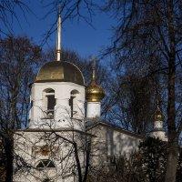 Псков. Церковь Алексия, человека Божия с поля :: Сергей Петров