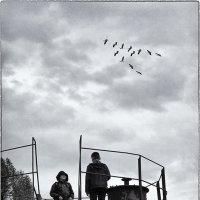 Осенний разговор о косяке :: Дмитрий Кунин