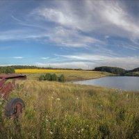 Сельский пейзаж :: serg