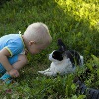 Человек и кошка... :: Валентина