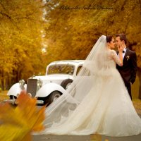 Свадьба... :: Дарина Колода