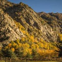осень в горах :: Мариям Хаджиева