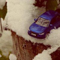 в снежном плену.. :: Наталья Бридигина
