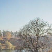 Пізня осінь :: Дмитрий Гончаренко